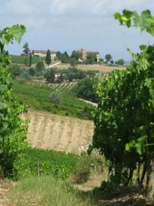 1 Toscana (2)