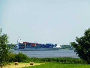 49 Elbe (1)